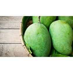 Fresh Mango Langra ( 1,5 Kg Box)
