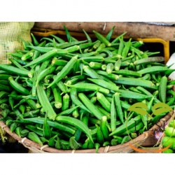 Okra ( Bhindi )500g (Shipping on Tuesday)