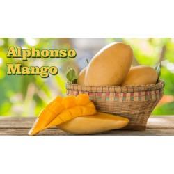 Fresh Alphanso Mango (6 Pieces)