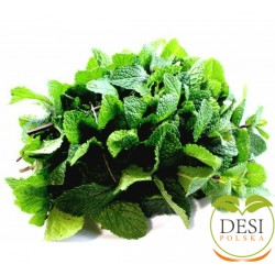 Mint Leaves ( Podina )